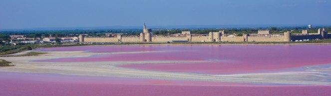 Pink Salty.jpg