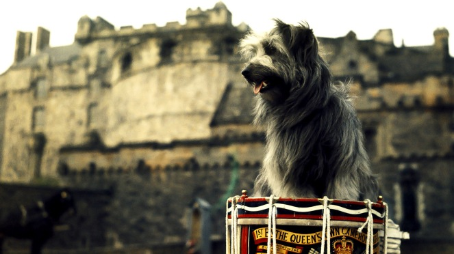 Skye Terrier and Edinburgh Castle.jpg