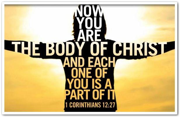 1 Corinthians 12-27.jpg